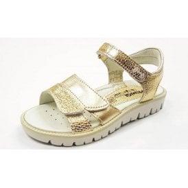 PAX 7613 Gold Platino Girl's Velcro Sandal